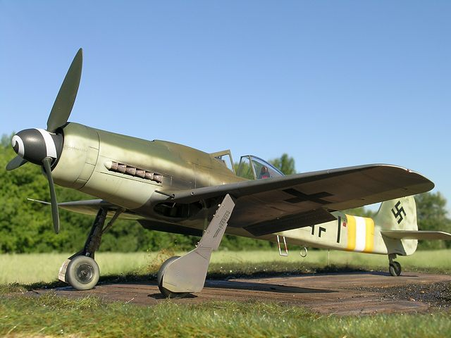 Here is an aircraft I would like help identifying Fw190d9bigtailir_01